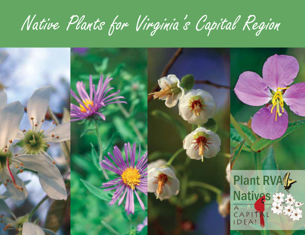 Plant_RVA_Natives